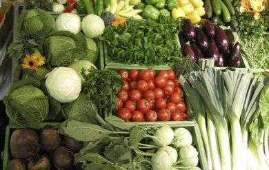 Stoffwechel anregen, Gemüse Bild1